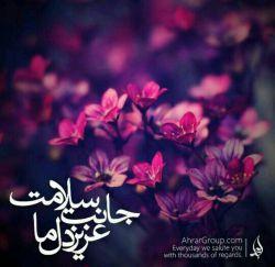 سلام بر مهدی -عج-  مولای مهر وماه ادرکنی.....