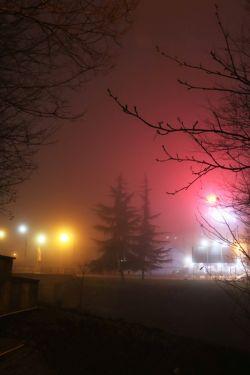 مه و سکوت و شب