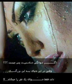 عشق یک مرد را با حرف هایش نه   از رفتارش باید فهمید   عشق یک زن را هم می توان   چه میگویم من   زن که عاشق نمیشود  دیوانه می شود!!!!!!!