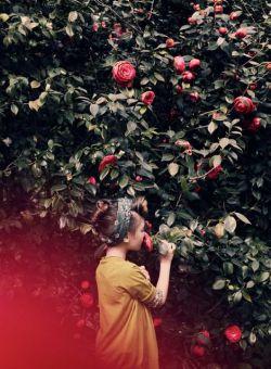 تا روزی که بود  دستهایش بوی گل سرخ میداد  از روزی که رفت  گلهای سرخ  بوی دستهای او را میدهند...   #واهه_آرمن
