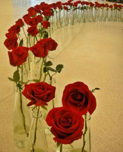 ولتناین جشن کودکان کار است و من برای خوشحال کردنشان از سر هر چهارراه  برای تو گلی خواهم خرید.