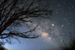 شب ها پرنده هایش می روند....روزها ستاره هایش....ببین..آسمان هم که باشی باز تنهایی...!!!