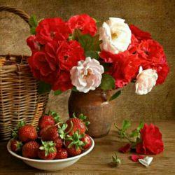 اینا اول تقدیمی من به شما گل های لنزور بعدش شما هم تقدیم کنین به دوستای خوبتون.