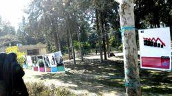 برپایی نمایشگاه عکس از ماجرای کرسنت،از شروع تا به حال در ورودی دانشگاه شیراز...