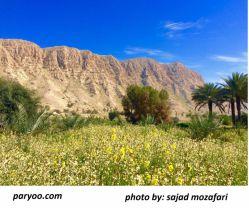 عکاس سجاد مظفری، برای تماشای تصاویر بیشتر از روستای فاریاب به سایت پاریو دات کام مراجعه نمائید.