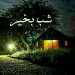 شب بخیر.به امید فردایی شادتر از امروز