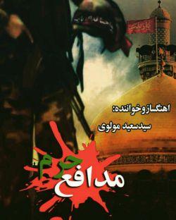 اهنگ مدافع حرم بزودی باصدای سعید مولوی منتشر خواهد شد،تقدیم به روح پاک شهدای مدافع حرم.