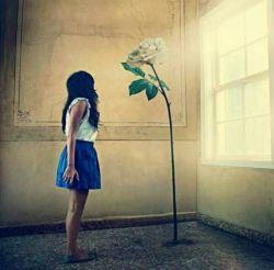روزت را با قـلـبے روشـن آغـاز کـن  بـگـذار تـمـام نـگـرانے هـایـت گـوشـه اے از شـب بـمانـنـد بـراے لـحـظـه اے بـخـنـد و خـدا را شـکـر کـن  بـراے تـمـام لـحـظـات کـه در تـمـام مـسـیـرهـا مـراقـبـت بـوده ..