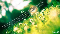 رحمانیت اسلام خداوند زیباست و زیبایی را دوست دارد...