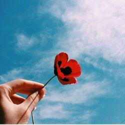 الـــــهی..اگر تقسیم شود.به من بیش از اینکه دادی نمیرسد..فلک الحمد... سلام دوستای گل مجازی...خیلی دلم براتون تنگه جددددددن....پیشاپیش عیدتون مبارک...:) خیلی خیلی ام التماس دعا^____^