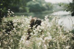 من مثل یک درخت.. گل پوش می شوم.. در بطن هر بهار.. تا یک درخت سبز.. از تو به یادگار.. باشد در این دیار........ ایرج جنتی عطایی