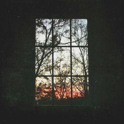 حتی می شود به سایه ات دل بست.. من ... در ادامه سایه ات، افتاب را می بینم... |نیلوفر لاری پور|