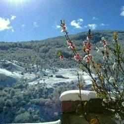 زمستان بهاری