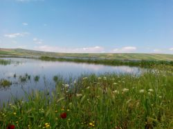 طبیعت دریاچه شهرمون