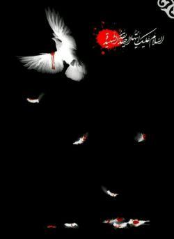 مدافع حریم ولایت یازهرا.....