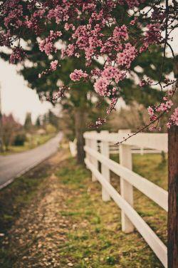 همزمان با شروع شکوفه همزمان با اغاز گیاه با تبسم ان قافیه ای که در کاغذ می روید، می تپد قلب های ما. زمان مشترک مهمانی. زمان شروع دیدارهای طولانی، زمان نگاه ها و خستگی هایی از سر خوشی. رادیو هفت❤