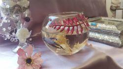 اینم ماهی هفت رنگمان انشالله عیدی رنگین کمانی داشته باشید