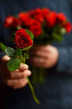 سلام دوستان خوبم✿ عیدتون مبارک باشه✿ امیدوارم سالی زیبا و سرشار از اتفاقات خوب و پر از موفقیت باشه✿  ببخشید برای غیبتم :)