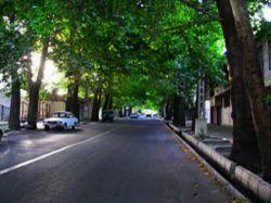 طبیعت درون شهری