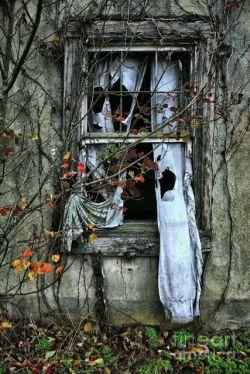گفته بودم که در این خانہ دِلم مےگیردرفتی از سَر لَج پنجره ها رآ بُردے.......