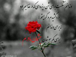 این روز خوب و قشنگ رو به تمام مادران و زنان ایرانی که پیرو راه مادرمان حضرت زهرا هستند تبریک و تهنیت عرض میکنم