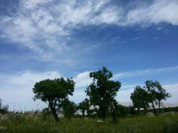 مهارلو نزدیک دریاچه نمک شیراز