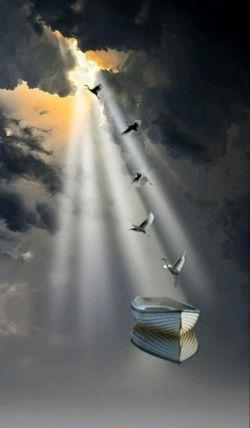 دلم برای کسی تنگ است،،  دلم برای کسی تنگ است  که چشمهای قشنگش را  به عمق آبی دریا می دوخت،،  و شعرهای قشنگی،  چون پرواز پرنده ها می خواند