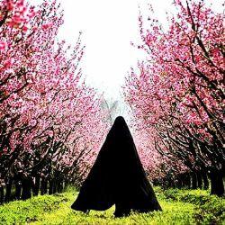 لحظات بهاری... . . یعنی لحظاتی که انسان احساس میکند پاک است و به محبوب نزدیک... . .   برای من بهترین لحظات زمانی است که خود را به خالق مهربانم نزدیک میبینم و میفهمم در آن لحظه  پاک بودم... . آن پاکی برایم بهار است و آن لحظه،لحظه ی بهاری.  آری.... . .  بهار ما لحظه ی پاک بودن و متصل شدن به منبع نور الهی است.  لحظاتمان بهاری باد .