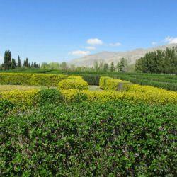 باغ گیاه شناسی. تهران