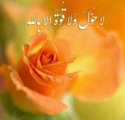 این دعا تقدیم شما عزیزان، الهی،غصه تو قلبت بمیره... تنت سالم دلت هرگز،نگیره..