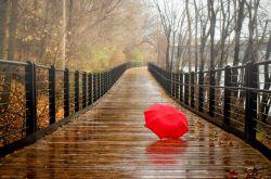 باز باران!  باز باران با ترانه می خورد بر بام خانه  خانه ام کو ؟؟؟ خانه ات کو ؟؟؟ آن دل دیوانه ات کو ؟؟؟  روزهای کودکی کو ؟؟؟ فصل خوب سادگی کو ؟؟؟ یادت آید روز باران گردش یک روز دیرین  پس چه شد دیگر ؟ کجا رفت خاطرات خوب و رنگین ؟؟؟  در پس آن کوی بن بست در دل تو آرزو هست ؟؟؟  کودک خوشحال دیروز  غرق در غم های امروز  یاد باران رفته از یاد  آرزوها رفته بر باد  بــاز بــــاران بــاز بــــاران  می خورد بر بام خانه  بی ترانه  بی بهانه  شایدم گم کرده خانه ....