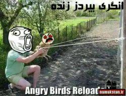 خدا اون پرنده هه رو بیامرزه :|