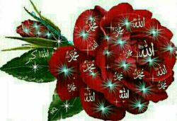 این گل همه اسمهایی كه روشه تقدیم دوستان عزیزم انشالله كه حافظ زندگیشون باشه..