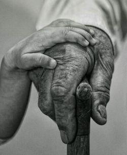 پدرم با دستان هاشور خورده و از رَمَق افتاده اش سیمای حقیقی فرشته ای است که بال هایش را پای عمر ما سوزانده است.
