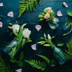 بعد از مدت ها... باغ و بهار را بگو لاف خوشی چه می زنی  من بنمایمت خوشی #چون_ برسد_ بهار _من_...  #مولانا