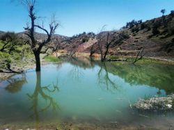 آبگیر روستاے زیباے #زرکوئیه ۱۳۹۵/۲/۲ جاتون سبز