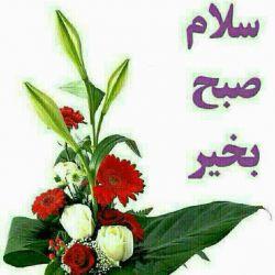 سلام گل های زندگی ،صبح بخیر