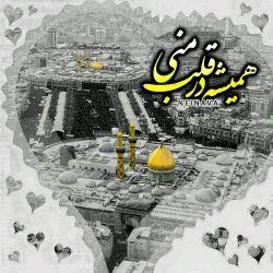 اللهم الرزقنا کربلا...