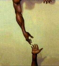 هیچکس بر دیگری برتری ندارد آدمی فقط در یک صورت حق دارد به دیگران از بالا نگاه کند ؛ و آن هنگامی است که بخواهد دست افتادهای را بگیرد و از زمین بلند کند ...