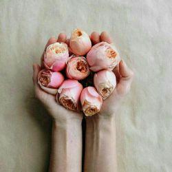 رنج نباید تو را غمگین كند، این همان جایی است كه اغلب مردم اشتباه میكنند... رنج قرار است تو را هوشیار تر كند ، چون انسانها زمانی هوشیارتر میشوند كه زخمی شوند، رنج نباید بیچارگی را بیشتر كند. رنجت را تنها تحمل نكن، رنجت را درك كن، این فرصتی است براى بیداری، وقتی آگاه شوی بیچارگی ات تمام میشود... اگر كه به جاى محبتی كه به كسی كردید از أو بی مهری دیده اید، مأیوس نشوید، چون برگشت آن محبت را از شخص دیگری، در زمان دیگری، در رابطه با موضوع دیگری' خواهید گرفت.  شك نكنید!  این قانون كائنات است....❤❤