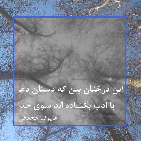 این درختان بین که دستان دعا با ادب بگشاده اند  سوی خدا  علیرضا چخماقی