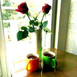 زندگی لحظه ی خوردن چای یه دنیا می ارزه