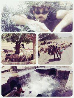شنا تو حوض قناب قصبه!! از زیر آب فیلم گرفتن تا خر و گله گوسفند و بز وسط راه #قنات قصبه #شنا