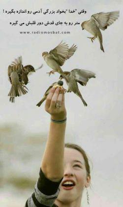 اگر رفتی  دیگر  بازنگرد !  که هیچ پرنده ای  از یک تخم  دو بار ٬ متولد نمی شود !