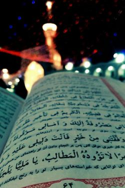 به فکر کربلا بودم،در آوردم سر از مشهد...  #عیدتون_مبارک