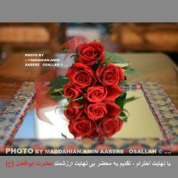 اصلاح تایپ تصویر : با نهایت احترام ، تقدیم به محضر بی نهایت ارزشمند حضرت ابوالفضل (ع) . (عکاس :مداحیان)