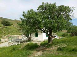 زیارتگاه حضرت عکاشه شهرستان کامیاران