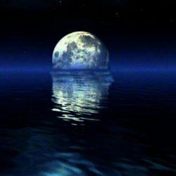 گاهی دلم میسوزد بذای شبی که غریبانه وارث::هزاران فکر..هزاران خاطره..وهزاران گریه ای بی صدا میشود..بی آنکه کسی ببیند و یا بشنود!!!!