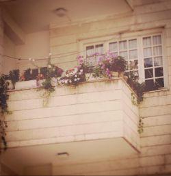 بوی مطبوعِ گُل و منظره ای رو به بهار؛ پنجره پشتِ خودش، یک من و تو کم دارد...  پ.ن. 28 اردیبهشت شد و تولد من (^_^)