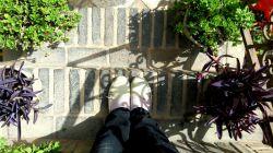 درکوچه باغ تنهاییم آهسته تر قدم بزن،  دلم جا مانده روی سنگفرشهای آغشته به برگ، یادت هست ! پشت پرچین ! جسارت اولین بوسه را، سالهاست دلم جا مانده  زیر برگهای پاییز! آهسته تر قدم بزن !!